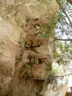 Arvakas gorge pink rock